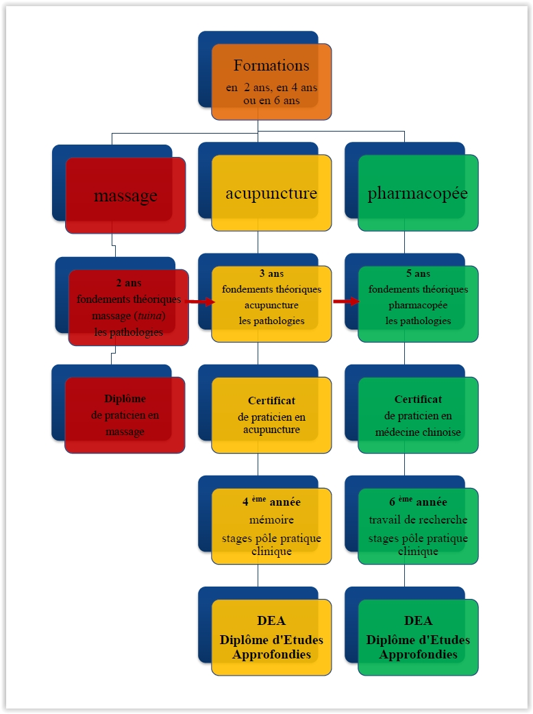 cursus-diagramme2